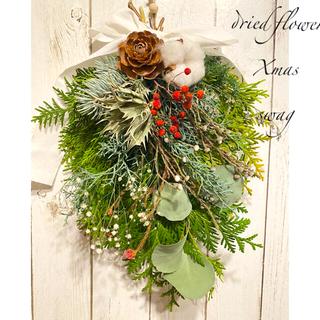 フレッシュ 檜葉 ブルーアイス が香る クリスマススワッグ ドライフラワー(ドライフラワー)