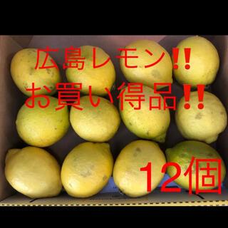 国産 広島レモン 12個(フルーツ)