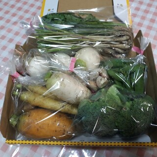 野菜詰め合わせコンパクト 無農薬(野菜)