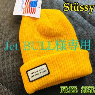 STUSSY - 【STUSSY/ステューシー】ビーニー《フリーサイズ》FREE/ニットキャップ