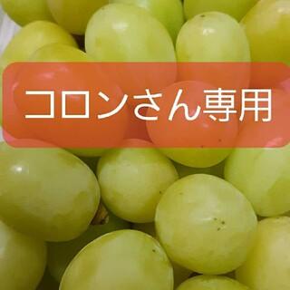 シャインマスカット秀品5キロ(フルーツ)