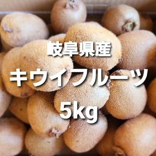 ⑤02 岐阜県産 無農薬 キウイフルーツ5kg お得!(フルーツ)