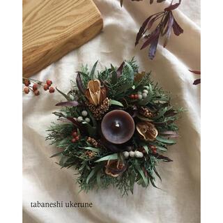 オオウバユリに針葉樹やブルニアを添えた 冬に飾る シックなリース ドライフラワー(ドライフラワー)