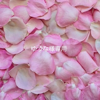 インポート❣️中国コスメ❣️リボン型 リップ 3本セット(A)(口紅)