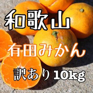 和歌山産 有田みかん 10kg  訳あり (フルーツ)
