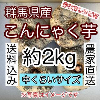 【群馬県産】こんにゃく芋約2kg【中くらいサイズ】手作りこんにゃく用 レシピ付 (野菜)