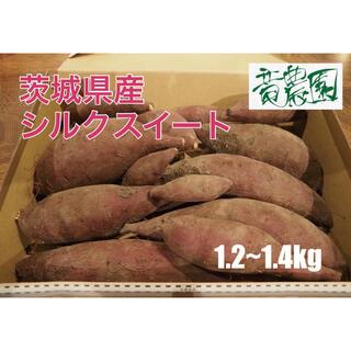 竜農園 20年産 茨城県 シルクスイート さつまいも 1.2~1.4kg(野菜)
