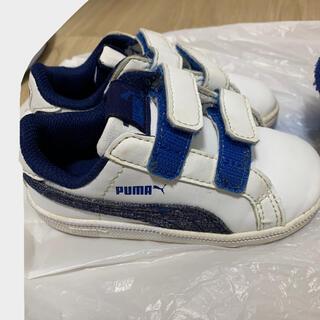 プーマ(PUMA)のpuma スニーカー 14(スニーカー)