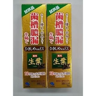 小林製薬 - 小林製薬 生葉 試供品10g✕2個