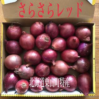 北海道栗山町特産タマネギ さらさらレッドSSサイズ(野菜)