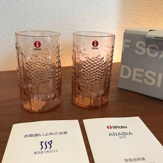 イッタラ(iittala)のイッタラ フローラ 新品 箱付き フローラ(グラス/カップ)