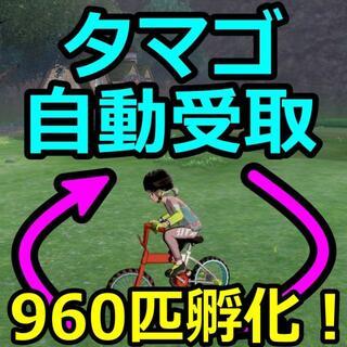ニンテンドースイッチ(Nintendo Switch)の最大960匹孵化!自動タマゴ受け取り ポケモン剣盾 コントローラー Switch(その他)