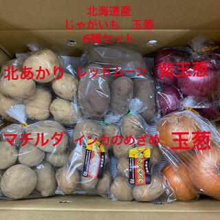 北海道産 じゃがいも 玉葱 6種セット(野菜)