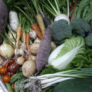 野菜詰め合わせ80サイズ 無農薬(野菜)