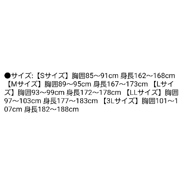 ファイテン 限定カラー ラメ 半袖 Tシャツ  スポーツ/アウトドアのスポーツ/アウトドア その他(バレーボール)の商品写真