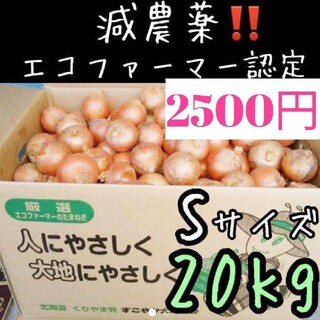 a28 北海道産 減農薬 玉ねぎ Sサイズ 20キロ(野菜)