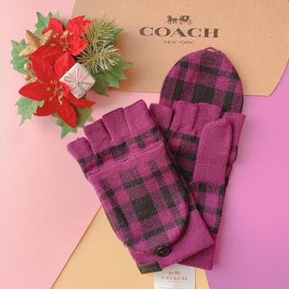 コーチ(COACH)の【即購入大歓迎】新品☆coach パープル 手袋 メンズ おしゃれ かわいい(手袋)