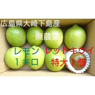 無農薬!広島県大崎下島産 グリーンレモン1キロ&特大レッドキウイ1個 お試しセッ(フルーツ)