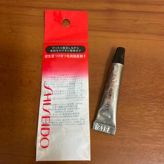 シセイドウ(SHISEIDO (資生堂))の資生堂 つけまつ毛用接着剤 3.3g(つけまつげ)