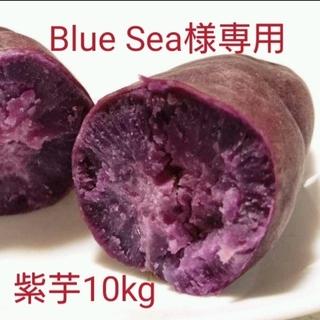 Blue Sea様専用紫芋10kg(野菜)