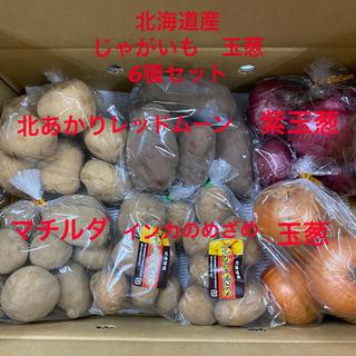 北海道産 じゃがいも 玉葱セット6種(野菜)