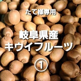 専用 ⑤5-1 岐阜県産 無農薬 キウイフルーツ ①(フルーツ)
