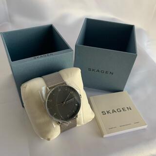 スカーゲン(SKAGEN)のSKAGEN(スカーゲン) SKW6664 シルバー 新品 未使用 メンズ(腕時計(アナログ))