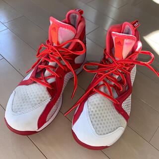 アディダス(adidas)のAdidas バスケットシューズ(その他)