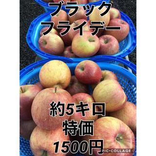 ブラックフライデー サンふじ★青森県産 訳あり商品(フルーツ)