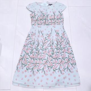 TOCCA - TOCCA 洗える SPLENDID BEAUTY ドレス ワンピース トッカ