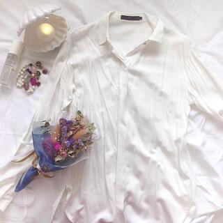 アズールバイマウジー(AZUL by moussy)のAZUL  アズール ブラウス 白 ホワイト 長袖 シンプル シアーシャツ(シャツ/ブラウス(長袖/七分))