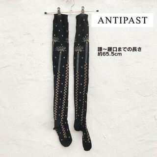 Ayame - ANTIPAST アンティパスト  ニーオーバーハイソックス