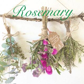香り立つ無農薬ローズマリーの木ガーランド ドライフラワー ハーブスワッグ(ドライフラワー)