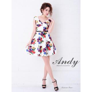 アンディ(Andy)のAndy 新作ドレス(ナイトドレス)