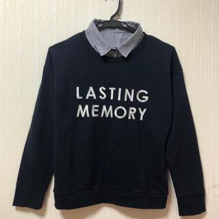 ブラウニー(BROWNY)の【BROWNY 】ロゴ入りセーター(ニット/セーター)