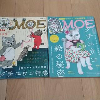 白泉社 - ヒグチユウコ MOE 二冊セット シール付き