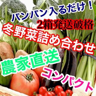 セール‼️破格2箱発送‼️冬野菜詰め合わせコンパクトぱんぱん発送‼️(野菜)