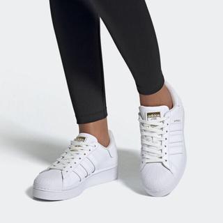 アディダス(adidas)の新品 アディダス adidas スーパースター 23.5(スニーカー)
