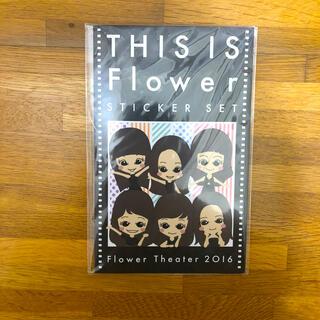 フラワー(flower)のTHIS IS Flower ステッカーセット(その他)
