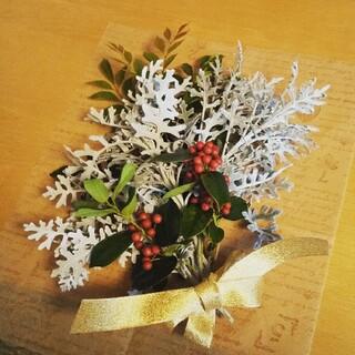 クリスマススワッグ材料  スワッグ材料 リース材料 (ドライフラワー)