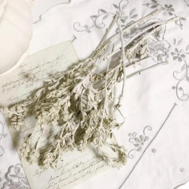 ドライフラワー / アンティーク小花 / 花材 ① ハンドメイドのフラワー/ガーデン(ドライフラワー)の商品写真