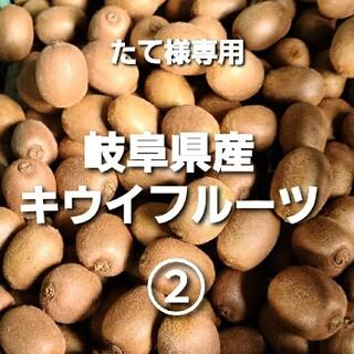 専用 ⑤5-2 岐阜県産 無農薬 キウイフルーツ ②(フルーツ)