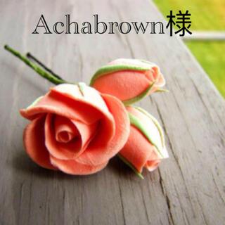 Achabrown様専用 ブラウンS(その他)