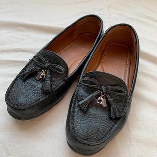COACH - コーチ レディース靴