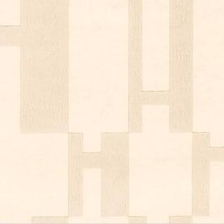 エルメス(Hermes)のエルメス HERMES 壁紙 貴重 新品未使用 OPH ベージュ(その他)