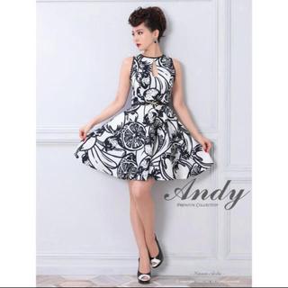 アンディ(Andy)のキャバドレス(ナイトドレス)