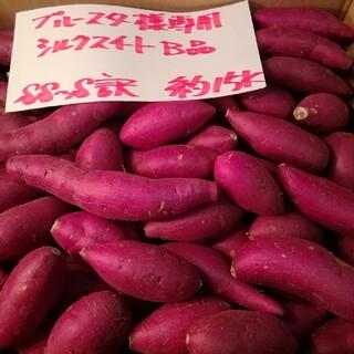 ブルースター様専用 超お得!!訳☆オーダー☆しっとり甘いシルクB品約15Kです。(野菜)