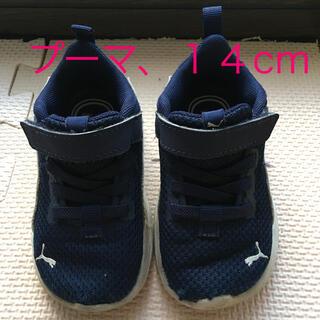 プーマ(PUMA)の子供用スニーカー【プーマ、ネイビー、14cm】(スニーカー)