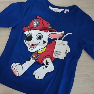 エイチアンドエイチ(H&H)のパウパトロール マーシャル ロンT Tシャツ(Tシャツ/カットソー)