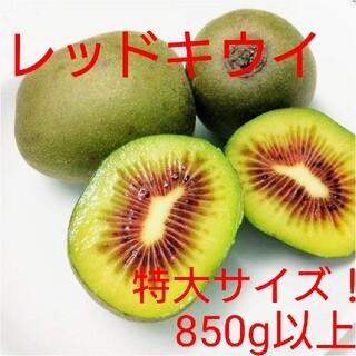 ポラリス様専用 キウイフルーツ【レッドキウイ】特大サイズ5キロ(フルーツ)